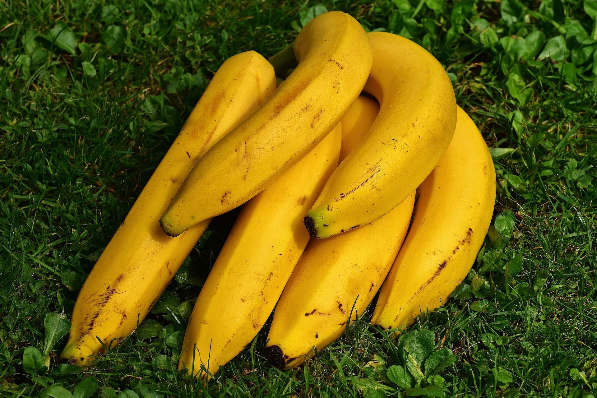 Banana health benefits and side effects
