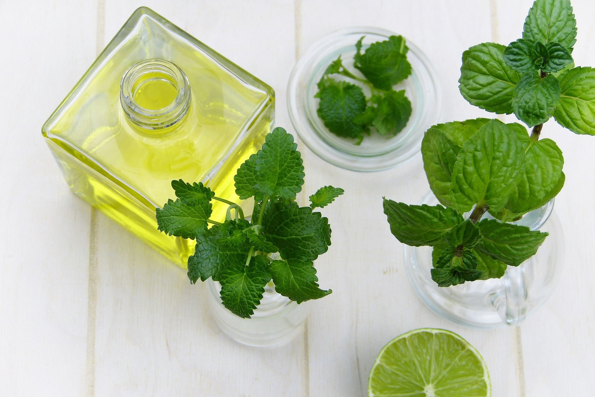 Mint Leaves Benefits For Skin