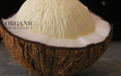 Coconut Sprouts Health Benefits